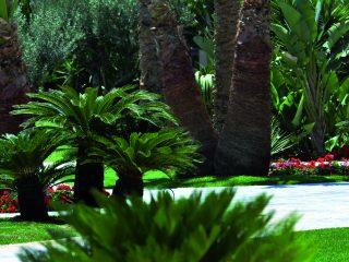 cote jardin-TAO-DSC_0357
